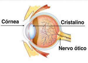 transplante-de-cornea-para-ceratocone-curitiba