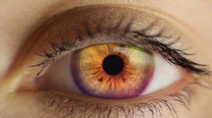 por que nossos olhos dizem tanto sobre nós